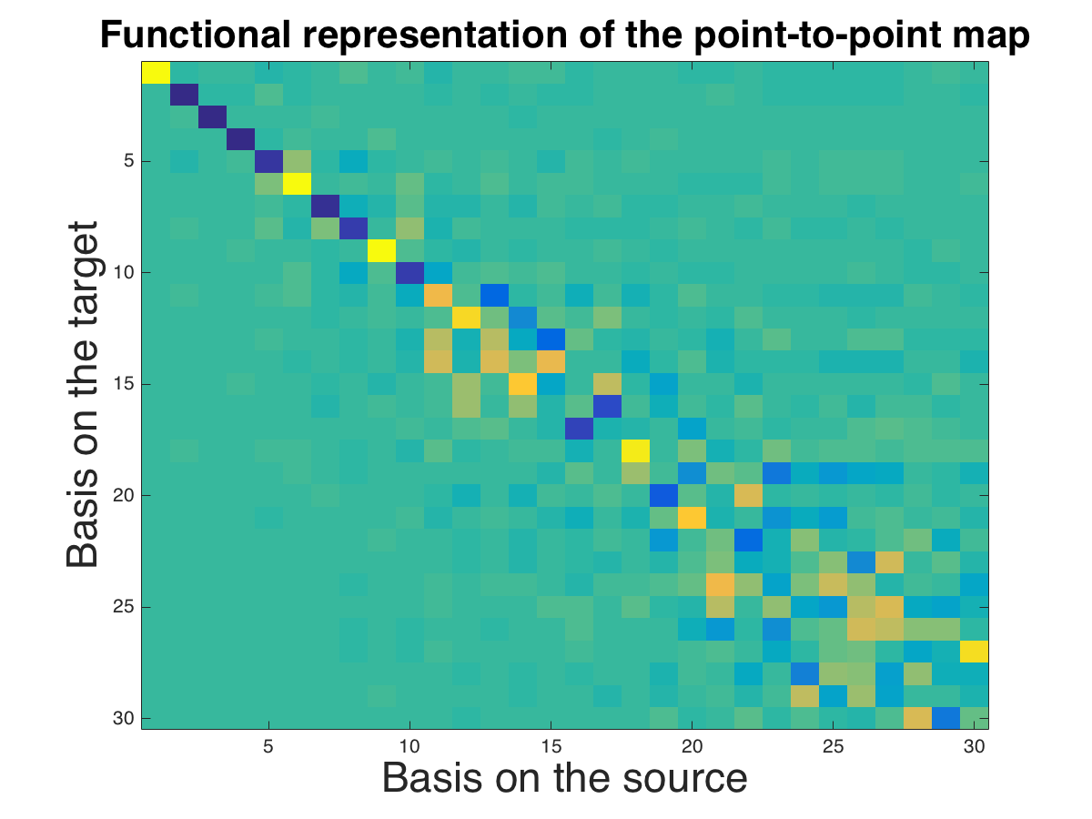 Computing and Processing Correspondences with Functional Maps